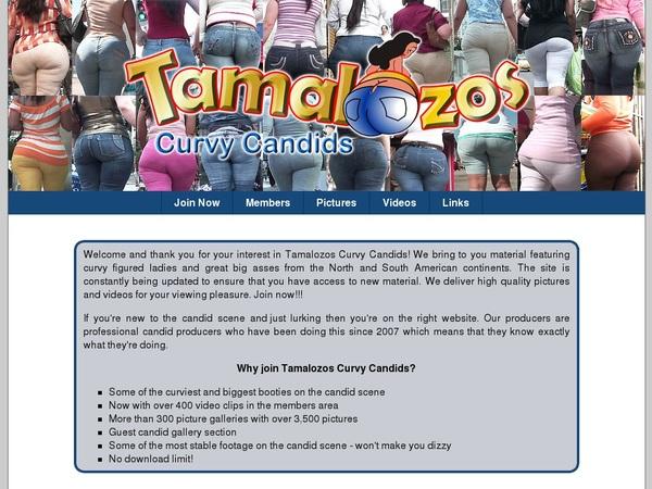 Tamalozoscurvycandids.com Account Premium