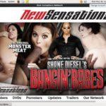 Shane Diesel Bankeinzug